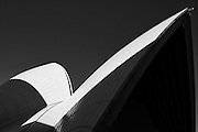 Roof of Sydney Opera House in monochrome
