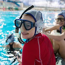 20140301: SLO, UWH - Underwater hockey tournament Memorial Bostjana Mesareca Kranj 2014