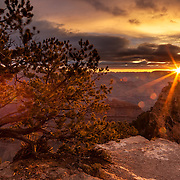 Drops of golden sun appear at sunrise at Yavapai Point overlook at Grand Canyon National Park, Arizona