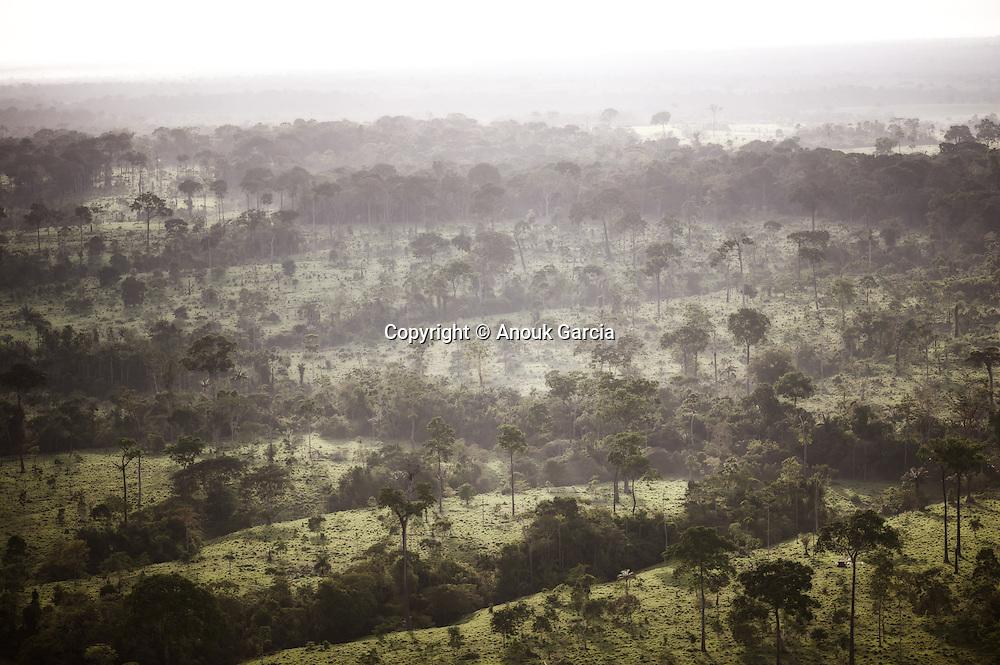 Acre entre forêt et pâturages | Acre entre Floresta e pastre