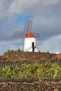 Windmill at Jardin de Cactus designed by César Manrique, Guatiza, Lanzarote, Canary Islands, Spain