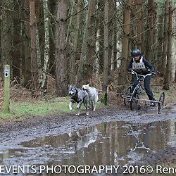 BSHRA Rendlesham March 5 - 6 2016