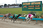 Southland Greyhound Racing Club