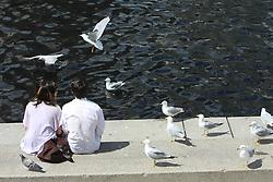 A couple with birds. (Photo by Vid Ponikvar / Sportida)