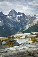 Mount Sir Donald and and the Illecillewaet Glacier seen from Abbott Ridge. Selkirk Mountains Glacier National Park British Columbia