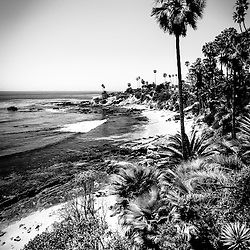 Laguna Beach Pacific Ocean shoreline black and white picture in high resolution.  Laguna Beach is a seaside beach community in Orange County Southern California. Photo is Copyright © 2012 Paul Velgos with All Rights Reserved.