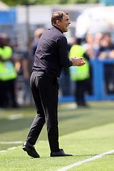 """Foto Filippo Rubin<br /> 06/05/2018 Ferrara (Italia)<br /> Sport Calcio<br /> Spal - Benvento - Campionato di calcio Serie A 2017/2018 - Stadio """"Paolo Mazza""""<br /> Nella foto: LEONARDO SEMPLICI (ALLENATORE SPAL)<br /> <br /> Photo Filippo Rubin<br /> May 06, 2018 Ferrara (Italy)<br /> Sport Soccer<br /> Spal vs Benvento - Italian Football Championship League A 2017/2018 - """"Paolo Mazza"""" Stadium <br /> In the pic: LEONARDO SEMPLICI (ALLENATORE SPAL)"""