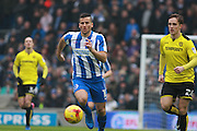 Brighton & Hove Albion centre forward Tomer Hemed during the EFL Sky Bet Championship match between Brighton and Hove Albion and Burton Albion at the American Express Community Stadium, Brighton and Hove, England on 11 February 2017. Photo by Bennett Dean.
