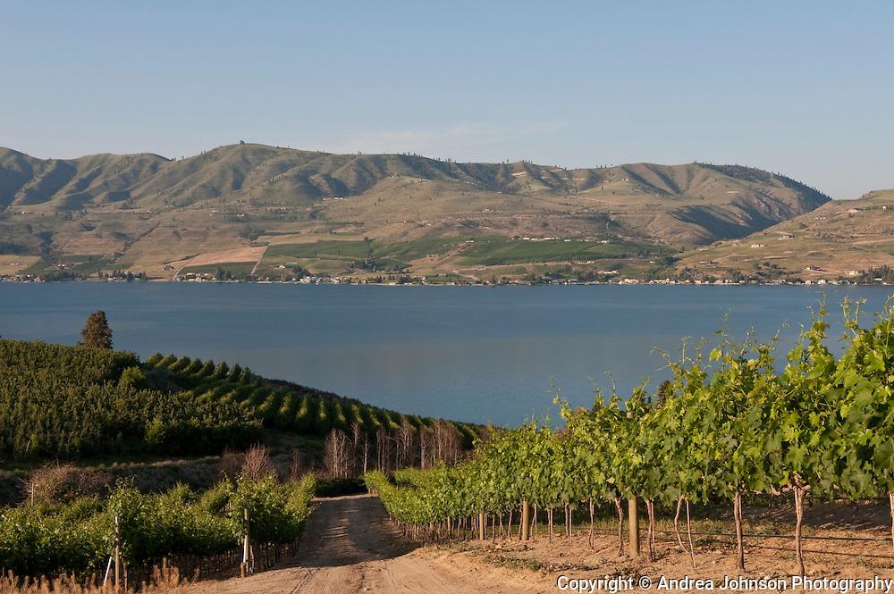 Benson Vineyards overlooking Lake Chelan, Washington