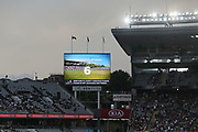 'Bat For Your Cap' activation. Twenty20 cricket match, New Zealand Black Caps v Sri Lanka at Eden Park, Auckland, New Zealand. 11 January 2019 © Copyright Photo: Anthony Au-Yeung / www.photosport.nz