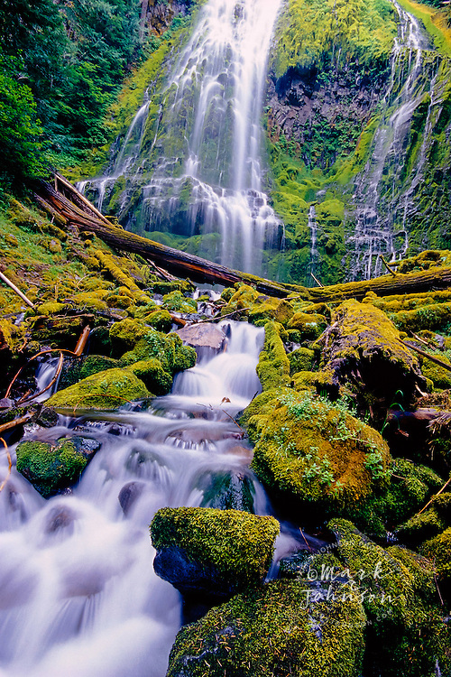Three Sisters Wilderness Area, Oregon, USA, USA --- Moss-Covered Rocks at Proxy Falls