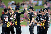 The Firebirds celebrate a wicket during the T20 Super Smash cricket game, Northern Knights v Wellington Firebirds played at Seddon Park, Hamilton, New Zealand on Saturday 22 December 2018.<br /> <br /> Copyright photo: &copy; Bruce Lim / www.photosport.nz