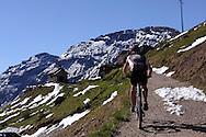 Valle di Fassa,Dolomiti Patrimonio dell'Unesco, 25 giugno 2010 © foto Daniele Mosna