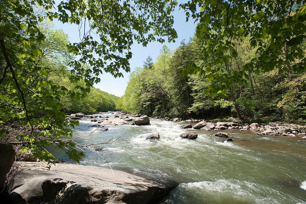 Upper Youghageny River near Friendsville MD