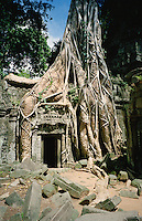 "During it's heyday 11 centuries ago, the city of Angkor was at the center of the Khmer civilization. The Khmers were not only a powerful empire, they were also one of history's most creative and artistic. They created hundreds of buildings and temples that are as magnificent as they are massive. After the empire fell to the Siamese in 1431 the city was left to be devoured by the dense jungle of Northern Cambodia. It wasn't until the French explorer Henri Mouhot wrote about his discovery of the fabled ""lost city of Angkor"" in the 1860's that the modern world was introduced to one of humanity's greatest architectural achievements.<br /> This former Buddhist temple, Ta Prohm is one of the most popular sites at Angkor because unlike it's famous neighbors Angkor Wat and The Bayon, Ta Prohm was left exactly as it was found, so you get a real sense of what it must have been like to rediscover this majestic city. Most experts believe that these voracious trees that have overtaken the site are the very thing holding it together and if archaeologist were to remove them, Ta Prohm would simply crumble."