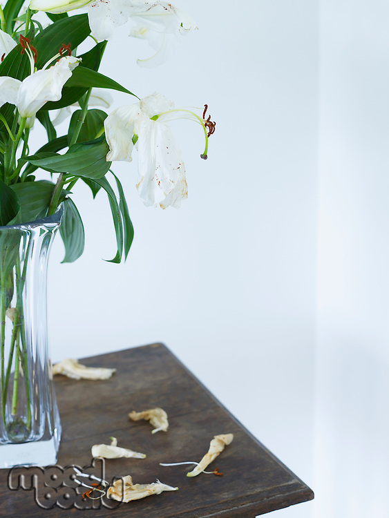 White lilies in vase on table close up