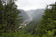The Nisqually River and the Nisqually Bridge from Ricksecker Point on a foggy day in Mount Rainier National Park, Washington State, USA