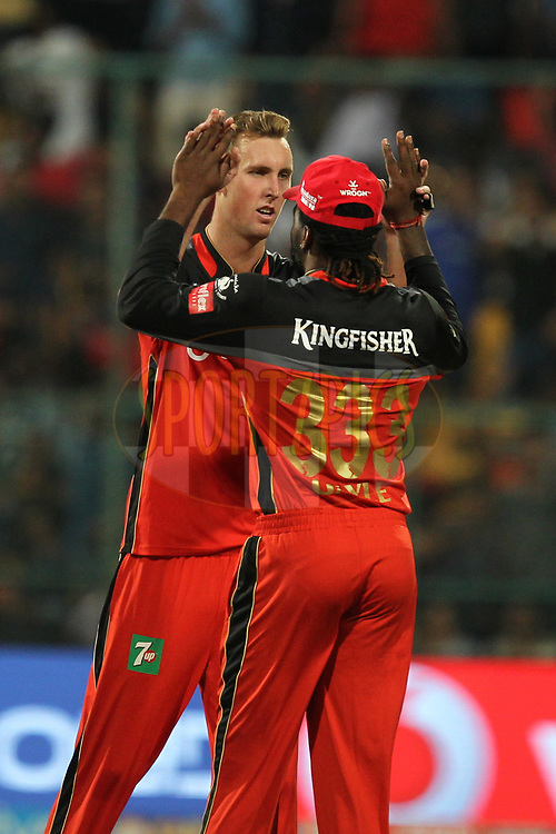 Billy Stanlake of Royal Challengers Bangalore celebrates wicket of Karun Nair of Delhi Daredevils during match 5 of the Vivo 2017 Indian Premier League between the Royal Challengers Bangalore and the Delhi Daredevils held at the M.Chinnaswamy Stadium in Bangalore, India on the 8th April 2017Photo by Prashant Bhoot - IPL - Sportzpics