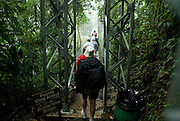 Costa Rica - Hanging Bridges Rain Forest.