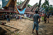 Indonesia, Sulawesi, Tana Toraja. A coffin with a body of a deceased is being put in a lokkian.<br />