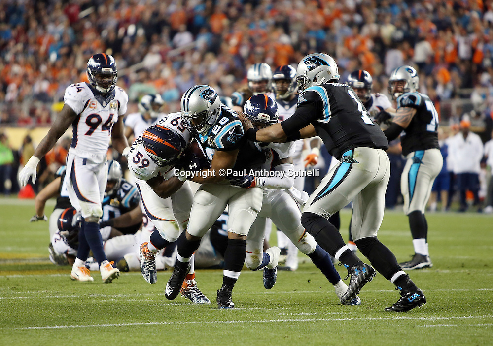 Carolina Panthers quarterback Cam Newton (1) tries to assist as Carolina Panthers running back Jonathan Stewart (28) gets gang tackled by Denver Broncos inside linebacker Danny Trevathan (59) and a teammate during the NFL Super Bowl 50 football game against the Denver Broncos on Sunday, Feb. 7, 2016 in Santa Clara, Calif. The Broncos won the game 24-10. (©Paul Anthony Spinelli)