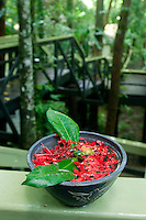 A bouquet of flowers greets guests to the Daintree Eco Lodge in far north Queensland