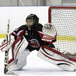 KINGSTON,ON-Feb 27 :<br />  Ontario Junior Hockey League, OJHL North East Conference playoff series round one, Kingston Voyageurs vs Pickering Panthers. Steven Dombrosky #33 of the Pickering Panthers Hockey Club during first period game action. (Photo by Robert John Boucher / OJHL Images)
