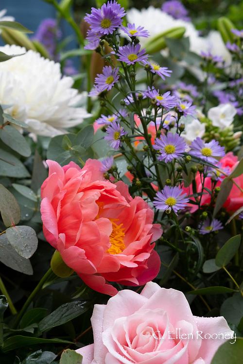 RHS Chelsea Flower Show 2019, London, UK