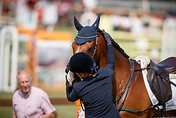 Kluytmans Ilonka, NED, Canna There He Is<br /> European Championship Eventing Landelijke Ruiters - Tongeren 2017<br /> © Hippo Foto - Dirk Caremans<br /> 30/07/2017