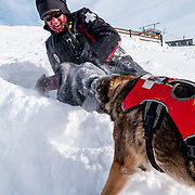Scott Stolte ragging with Josie Wales another JHMR certified avalanche rescue dog owned by Chris Brindisi.