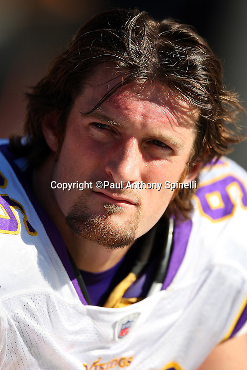 Minnesota Vikings defensive end Brian Robison (96) looks on during the NFL football game against the Pittsburgh Steelers, October 25, 2009 in Pittsburgh, Pennsylvania. The Steelers won the game 27-17. (©Paul Anthony Spinelli)