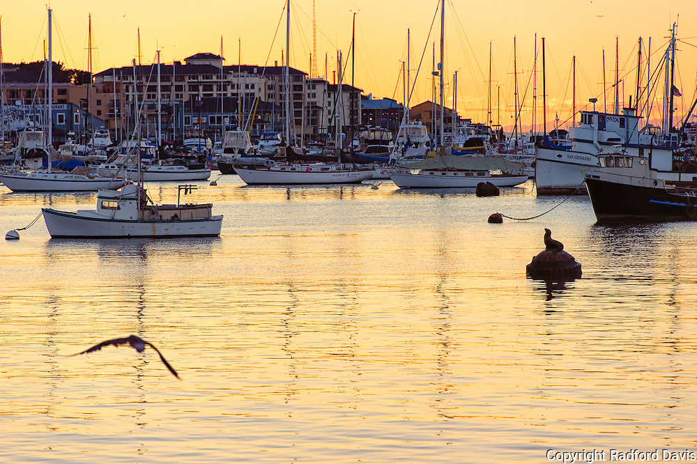 Marina, Monterey, California at sunset.