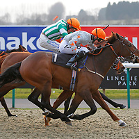 Thecornishcowboy and Graham Lee winning the 5.00 race