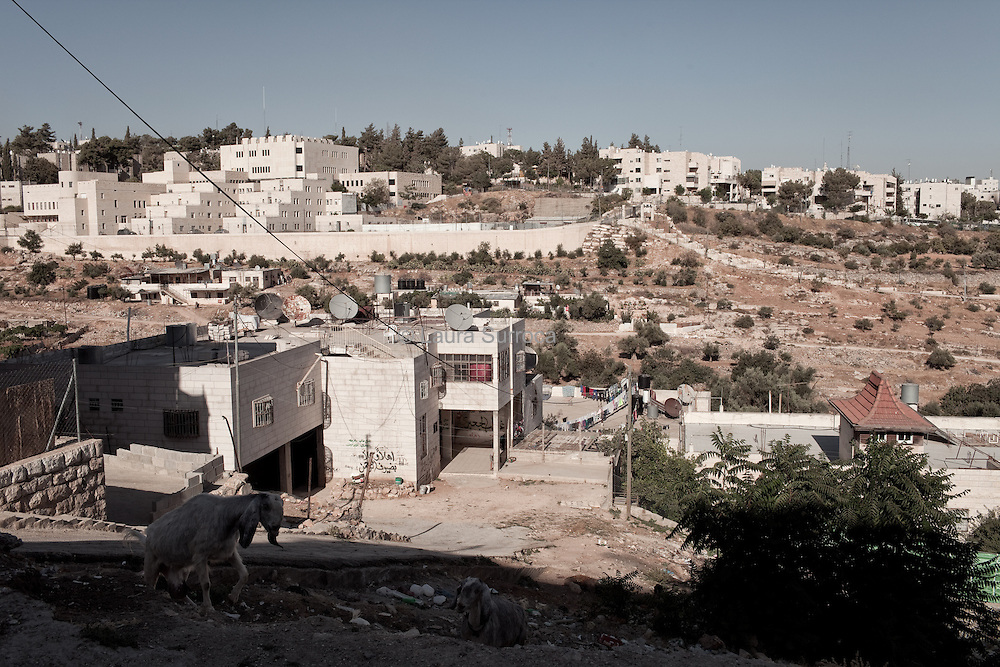 The settlement Givat Ha'avot looks over the palestinians houses, in Hebron H2, West Bank.