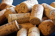 Winebottle corks