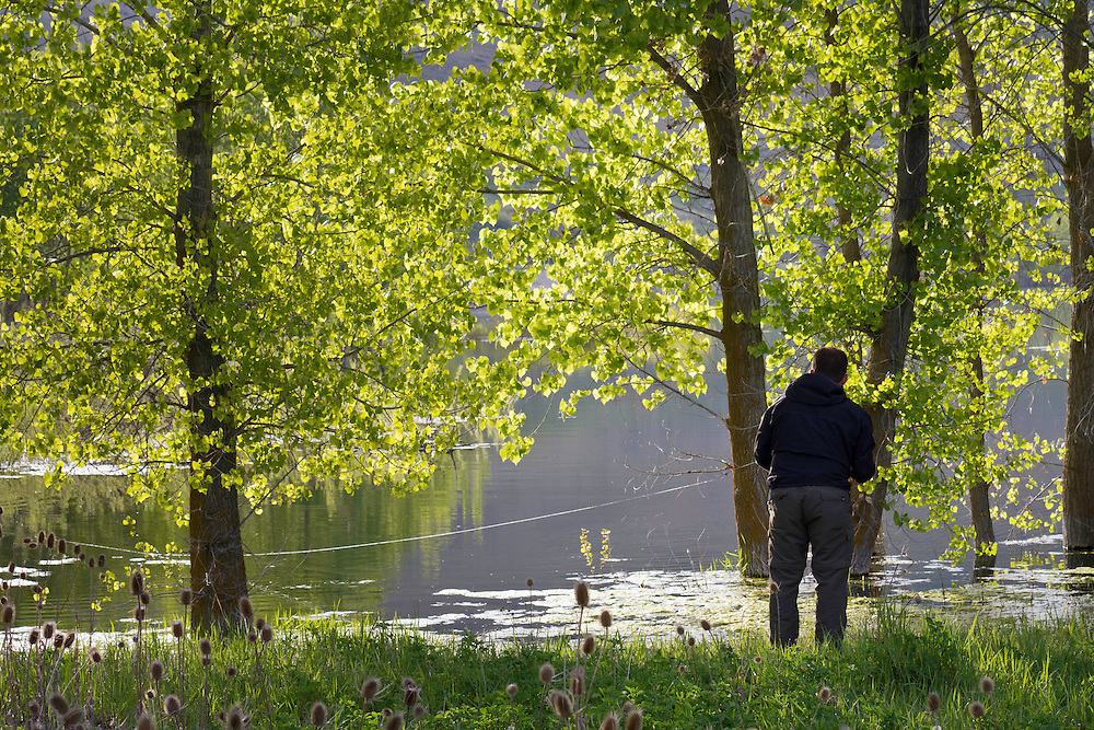 Fisherman fishing between the trees for Tiger Musky