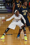 Cedar Ridge's Lashann Higgs in play action against Stony Point Saturday  at Cedar Ridge.  The Raiders beat the Tigers 66-58.