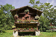 02 AUGUST 2007 -- INTERLAKEN, BERN, SWITZERLAND: Flowers decorate the front of a cabin in Murren, a small village in the Swiss Alps in the canton of Bern, Switzerland. PHOTO BY JACK KURTZ