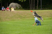 Granite State Disk Dogs at Belmont Old Home Day August 11, 2012.