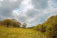 En pleine saison sèche sur la route entre Le Diamant et Les Anses d'Arlet, juste après une belle averse, un ciel bleu faisait son apparition sur un paysage automnal.