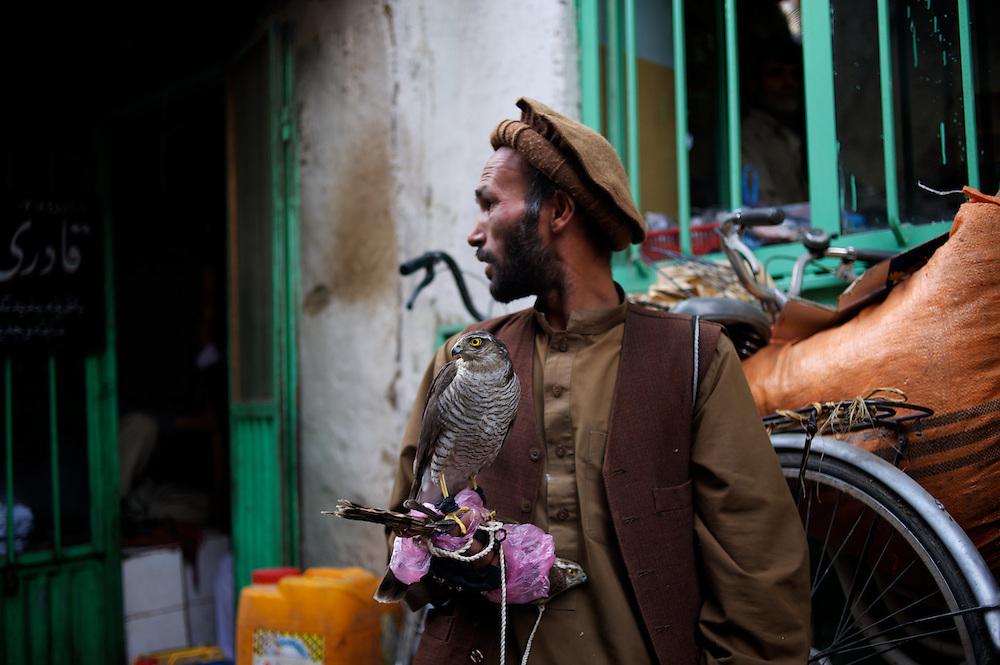 November 15, 2012 - Kabul, Afghanistan: A vendor stands holding a bird of prey at Kabul's bird bazaar. (Paulo Nunes dos Santos)