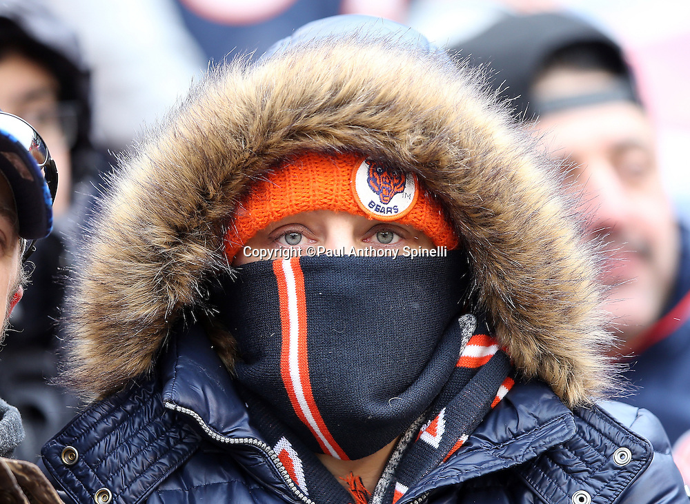 A Chicago Bears fan stays bundled up on a cold day during the Chicago Bears NFL week 17 regular season football game against the Detroit Lions on Sunday, Jan. 3, 2016 in Chicago. The Lions won the game 24-20. (©Paul Anthony Spinelli)