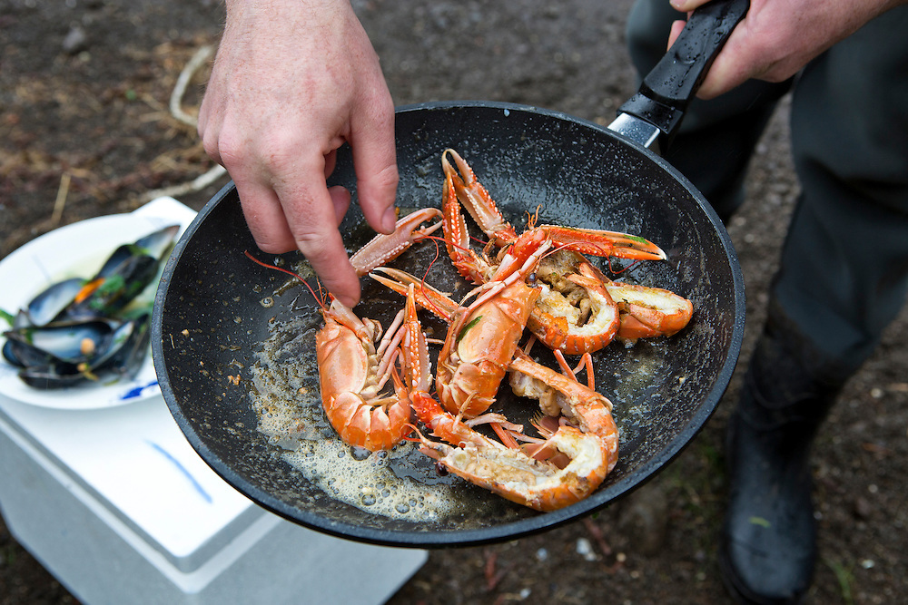 Faroe Islands.  A chef prepares fresh  langoustines for lunch.