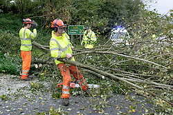 St Judes storm lashes at the South of England.<br /> Emergency services and Highways work to clear a fallen tree on the A35 between Bridport and Axminster at Raymonds Hill, near Axminster, Devon, UK.  Monday, 28th October 2013. Picture by i-Images