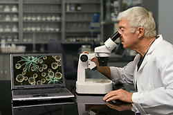 Biologist looking through a microscope in a research lab