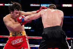 June 4, 2011; Los Angeles, CA; USA; Julio Cesar Chavez Jr. (red trunks) and Sebastian Zbik (black trunks) during their 12 round WBC Middleweight Championship bout at the Staples Center in Los Angeles, CA.
