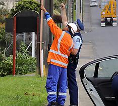 Auckland-Man electrocuted while cutting tree, Hepburn Road, Glendene