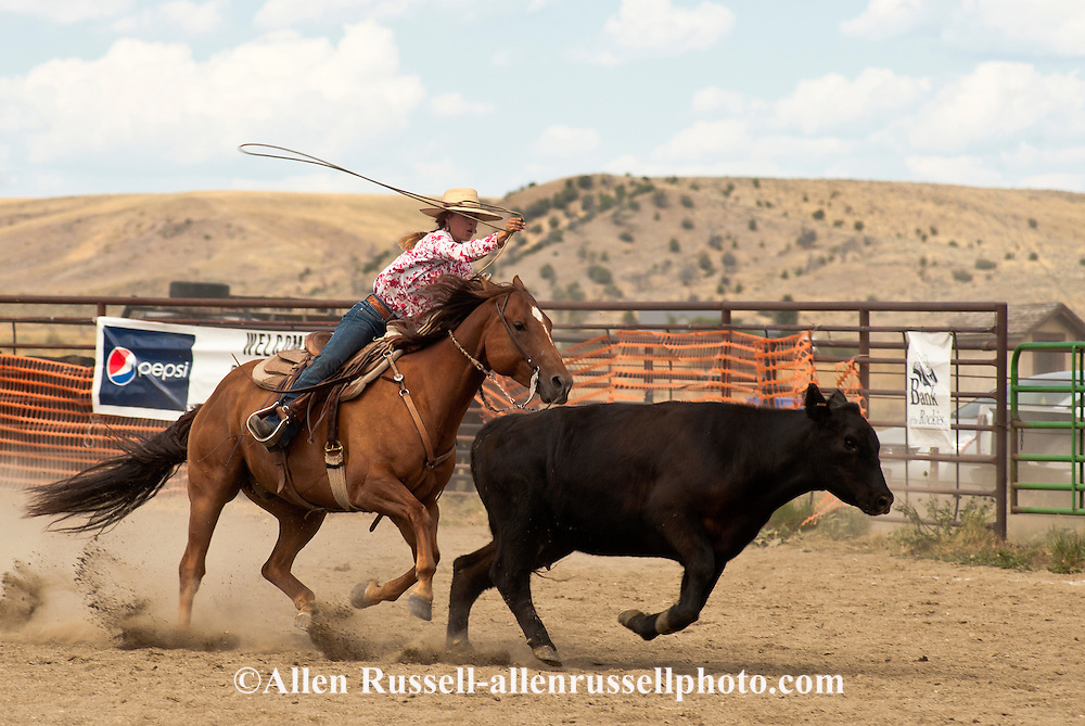 Cowgirl, Wilsall Ranch Rodeo, Montana, Wild Cow Milking, Lilly Brogger, CA Ranch Team, MODEL RELEASED, PROPERTY RELEASED
