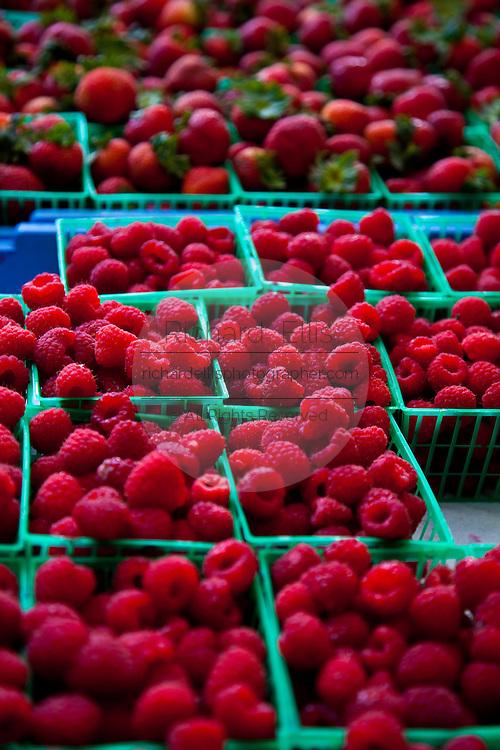 Fresh South Carolina raspberries at an organic local produce farmers market in Marion Square in Charleston, South Carolina (photo by Charleston SC photographer Richard Ellis)
