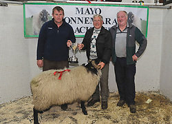 Mayo/Connemara Sheep Show of Blackface Rams.<br /> 1st place Hogget Ram Michael O' Neill,&nbsp;Tuar Mhic Eadaigh collecting his prize from Stephen Grealis and Seamus Joyce.<br /> Pic Conor McKeown